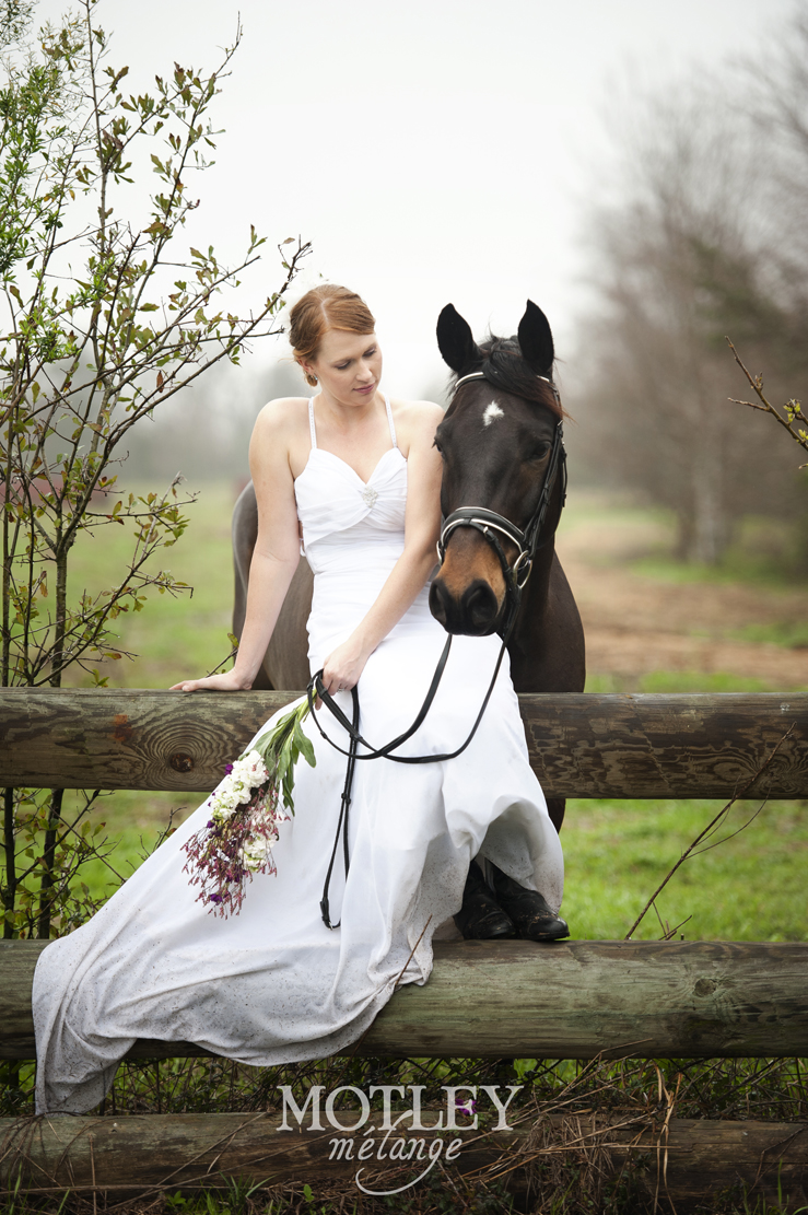 Bride Amp Horse Houston Bridal Photography