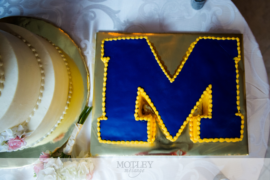 frosted_memory_makers_cake