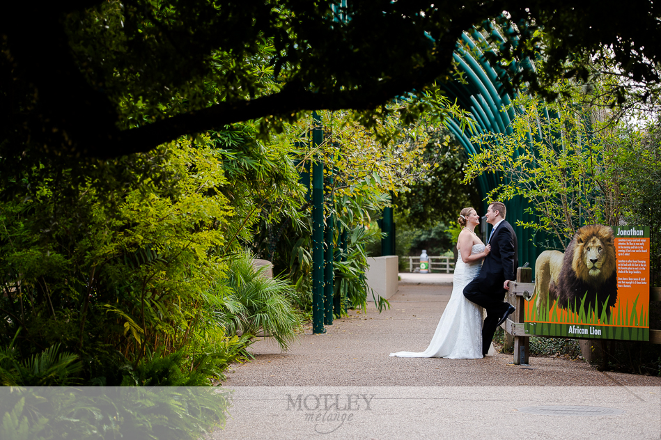 bride and groom at zoo