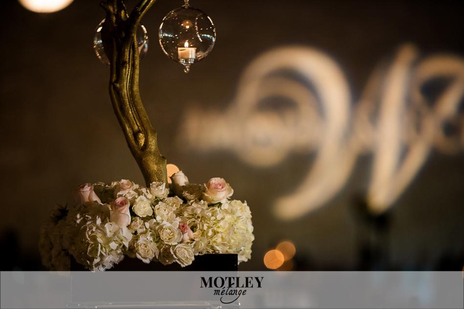 briscoe-manor-wedding-photos-11