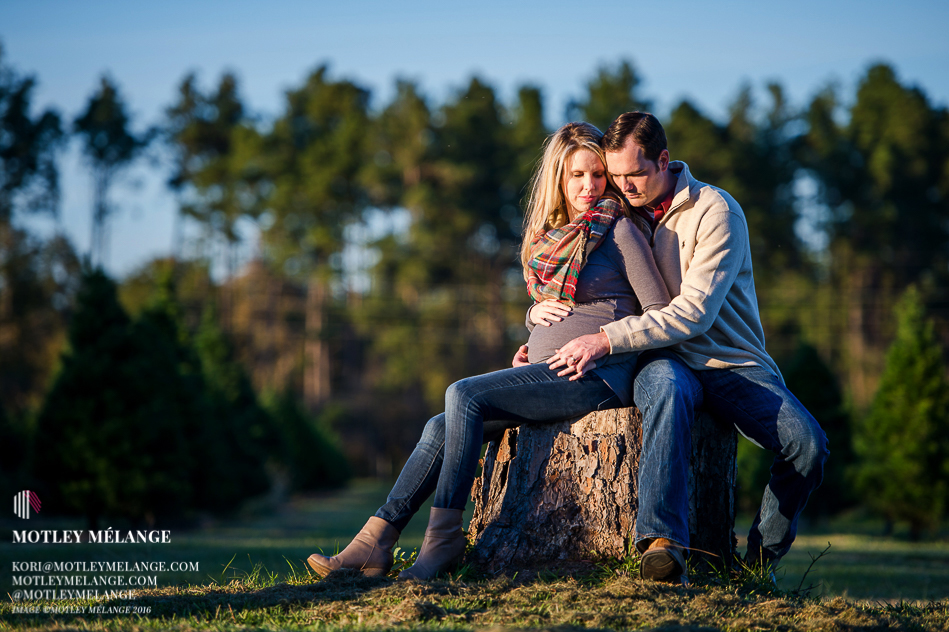 christmas-tree-forest-maternity-session-01